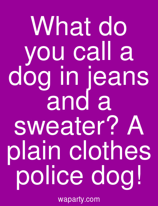 What do you call a dog in jeans and a sweater? A plain clothes police dog!