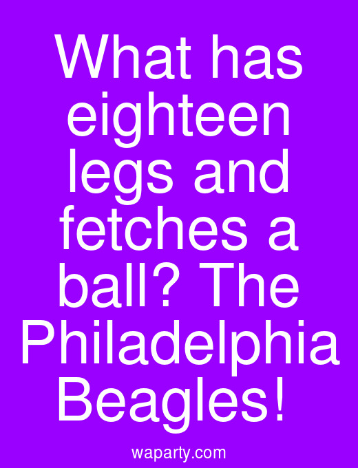 What has eighteen legs and fetches a ball? The Philadelphia Beagles!