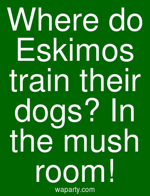 Where do Eskimos train their dogs? In the mush room!