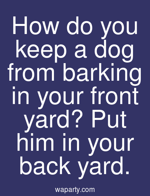 How do you keep a dog from barking in your front yard? Put him in your back yard.