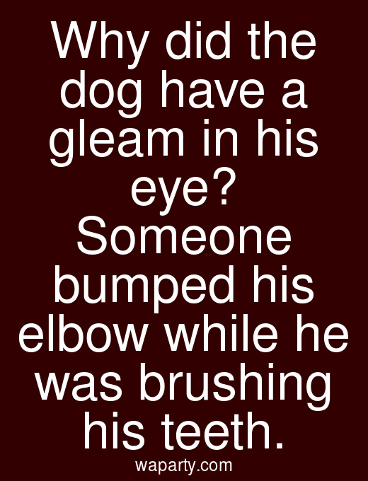 Why did the dog have a gleam in his eye? Someone bumped his elbow while he was brushing his teeth.