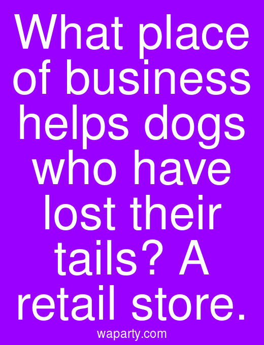 What place of business helps dogs who have lost their tails? A retail store.
