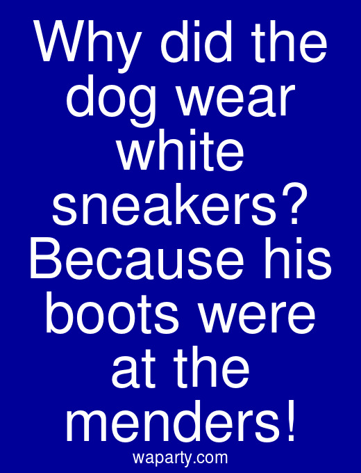 Why did the dog wear white sneakers? Because his boots were at the menders!