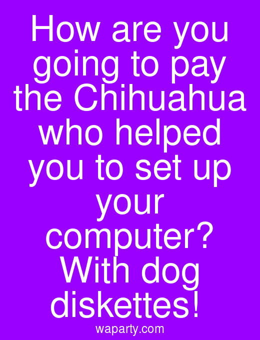 How are you going to pay the Chihuahua who helped you to set up your computer? With dog diskettes!