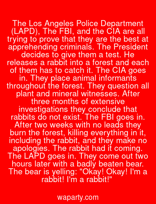 The Los Angeles Police Department (LAPD), The FBI, and the CIA are all trying to prove that they are the best at apprehending criminals. The President decides to give them a test. He releases a rabbit into a forest and each of them has to catch it. The CIA goes in. They place animal informants throughout the forest. They question all plant and mineral witnesses. After three months of extensive investigations they conclude that rabbits do not exist. The FBI goes in. After two weeks with no leads they burn the forest, killing everything in it, including the rabbit, and they make no apologies. The rabbit had it coming. The LAPD goes in. They come out two hours later with a badly beaten bear. The bear is yelling: Okay! Okay! Im a rabbit! Im a rabbit!