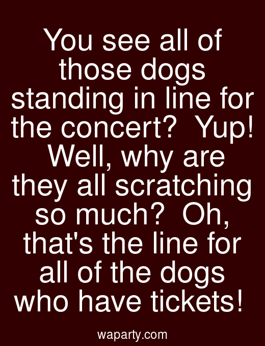You see all of those dogs standing in line for the concert?  Yup!  Well, why are they all scratching so much?  Oh, thats the line for all of the dogs who have tickets!