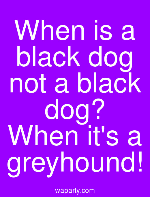 When is a black dog not a black dog? When its a greyhound!