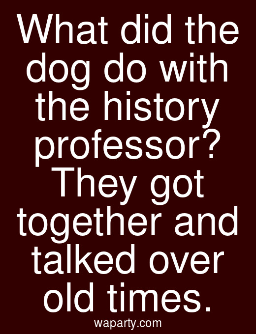 What did the dog do with the history professor? They got together and talked over old times.