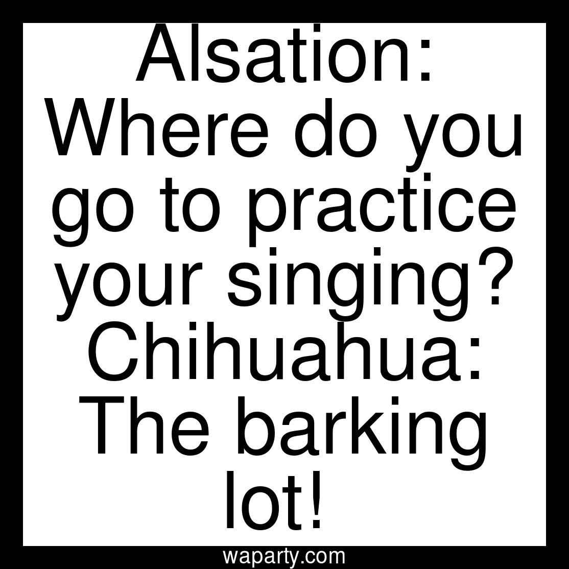 Alsation: Where do you go to practice your singing? Chihuahua: The barking lot!