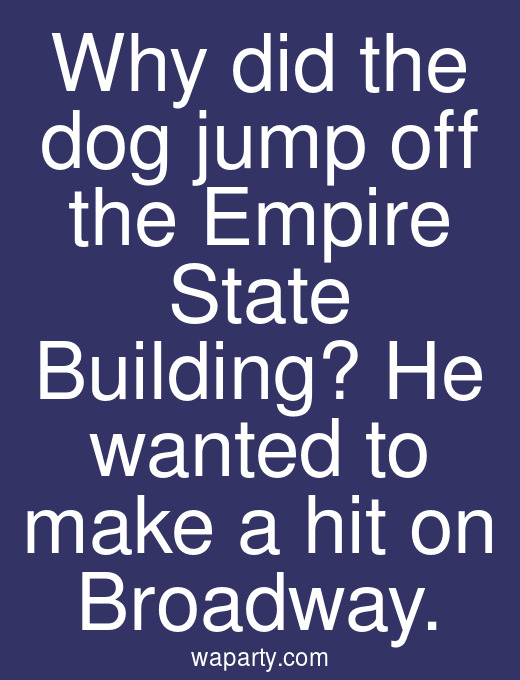 Why did the dog jump off the Empire State Building? He wanted to make a hit on Broadway.