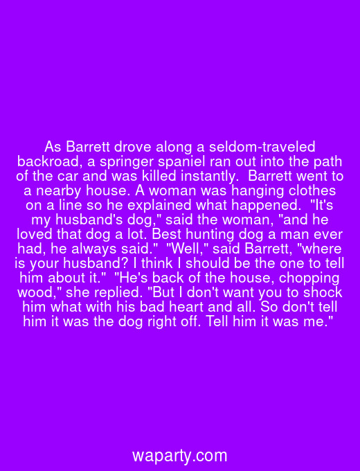 As Barrett drove along a seldom-traveled backroad, a springer spaniel ran out into the path of the car and was killed instantly.  Barrett went to a nearby house. A woman was hanging clothes on a line so he explained what happened.  Its my husbands dog, said the woman, and he loved that dog a lot. Best hunting dog a man ever had, he always said.  Well, said Barrett, where is your husband? I think I should be the one to tell him about it.  Hes back of the house, chopping wood, she replied. But I dont want you to shock him what with his bad heart and all. So dont tell him it was the dog right off. Tell him it was me.