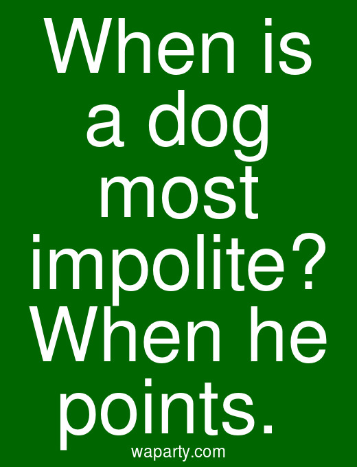 When is a dog most impolite? When he points.