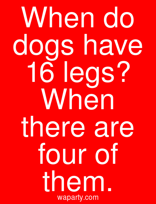 When do dogs have 16 legs? When there are four of them.
