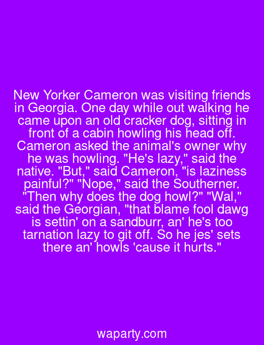 New Yorker Cameron was visiting friends in Georgia. One day while out walking he came upon an old cracker dog, sitting in front of a cabin howling his head off. Cameron asked the animals owner why he was howling. Hes lazy, said the native. But, said Cameron, is laziness painful? Nope, said the Southerner. Then why does the dog howl? Wal, said the Georgian, that blame fool dawg is settin on a sandburr, an hes too tarnation lazy to git off. So he jes sets there an howls cause it hurts.