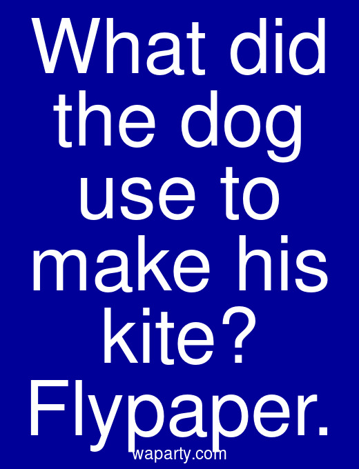 What did the dog use to make his kite? Flypaper.
