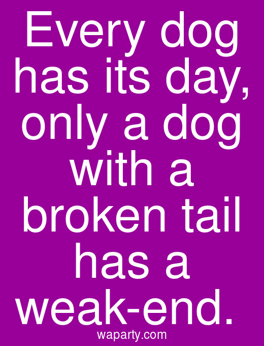 Every dog has its day, only a dog with a broken tail has a weak-end.
