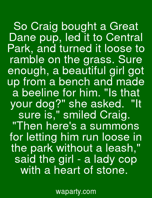 So Craig bought a Great Dane pup, led it to Central Park, and turned it loose to ramble on the grass. Sure enough, a beautiful girl got up from a bench and made a beeline for him. Is that your dog? she asked.  It sure is, smiled Craig.  Then heres a summons for letting him run loose in the park without a leash, said the girl - a lady cop with a heart of stone.