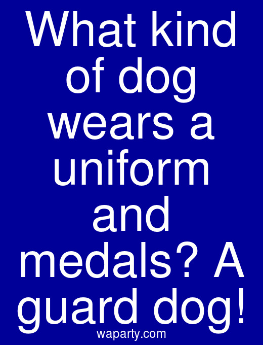 What kind of dog wears a uniform and medals? A guard dog!