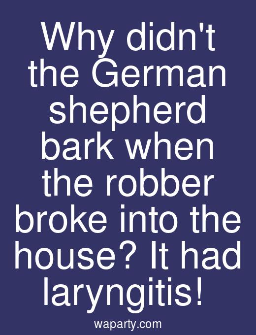 Why didnt the German shepherd bark when the robber broke into the house? It had laryngitis!