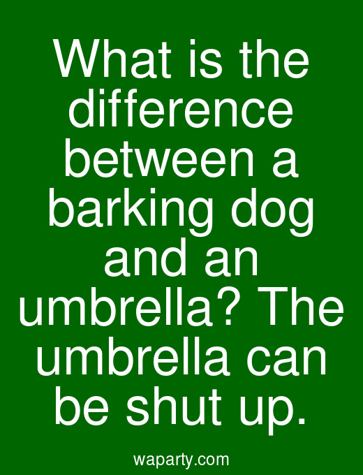 What is the difference between a barking dog and an umbrella? The umbrella can be shut up.