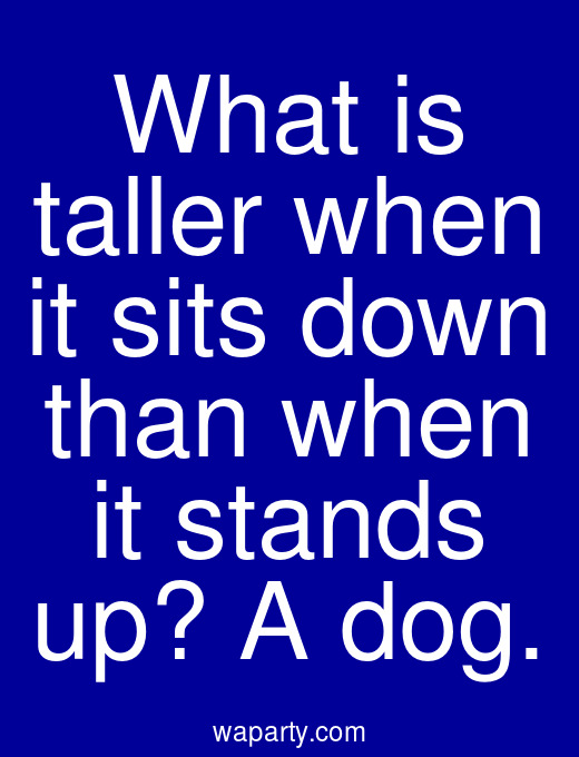 What is taller when it sits down than when it stands up? A dog.