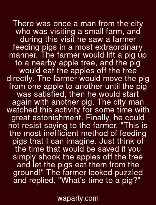 There was once a man from the city who was visiting a small farm, and during this visit he saw a farmer feeding pigs in a most extraordinary manner. The farmer would lift a pig up to a nearby apple tree, and the pig would eat the apples off the tree directly. The farmer would move the pig from one apple to another until the pig was satisfied, then he would start again with another pig. The city man watched this activity for some time with great astonishment. Finally, he could not resist saying to the farmer, This is the most inefficient method of feeding pigs that I can imagine. Just think of the time that would be saved if you simply shook the apples off the tree and let the pigs eat them from the ground! The farmer looked puzzled and replied, Whats time to a pig?
