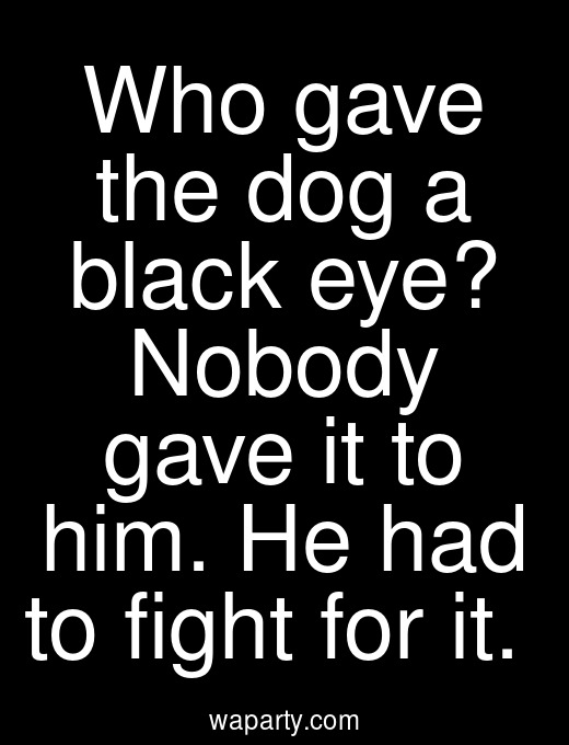 Who gave the dog a black eye? Nobody gave it to him. He had to fight for it.
