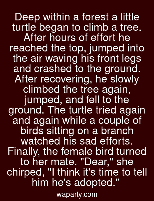 Deep within a forest a little turtle began to climb a tree. After hours of effort he reached the top, jumped into the air waving his front legs and crashed to the ground. After recovering, he slowly climbed the tree again, jumped, and fell to the ground. The turtle tried again and again while a couple of birds sitting on a branch watched his sad efforts. Finally, the female bird turned to her mate. Dear, she chirped, I think its time to tell him hes adopted.
