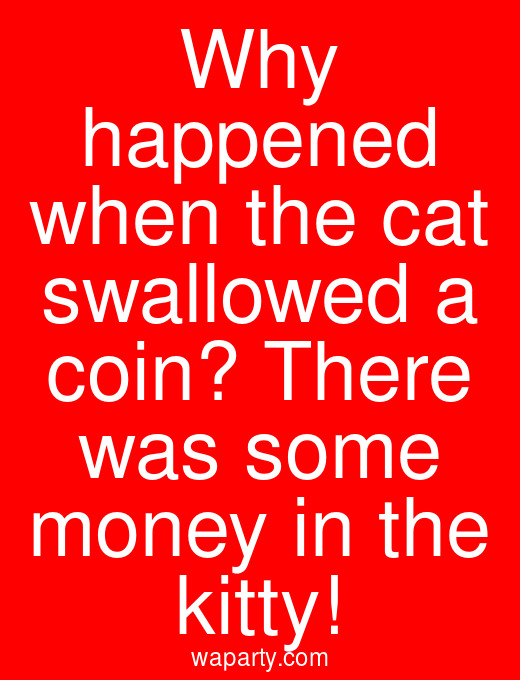 Why happened when the cat swallowed a coin? There was some money in the kitty!