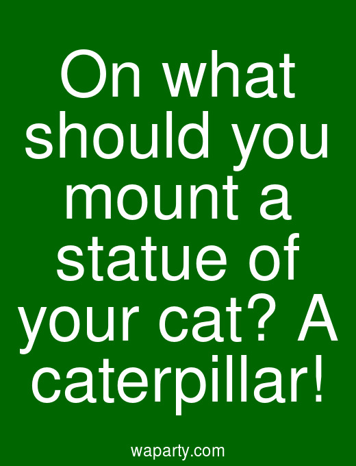 On what should you mount a statue of your cat? A caterpillar!