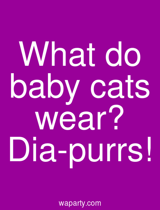 What do baby cats wear? Dia-purrs!