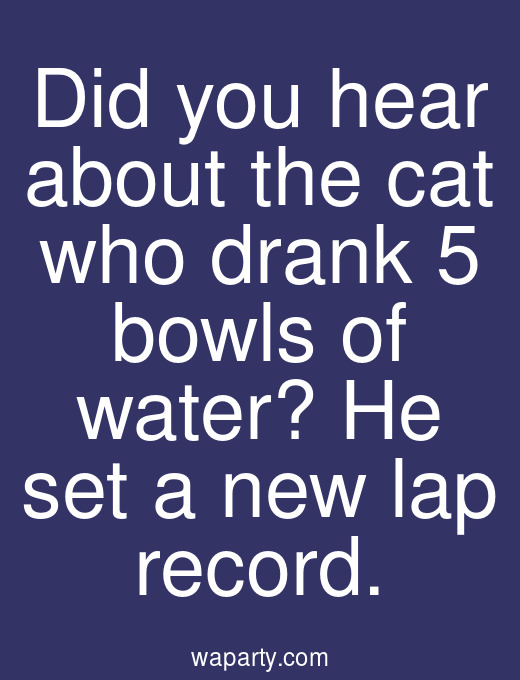 Did you hear about the cat who drank 5 bowls of water? He set a new lap record.