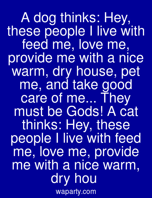 A dog thinks: Hey, these people I live with feed me, love me, provide me with a nice warm, dry house, pet me, and take good care of me... They must be Gods! A cat thinks: Hey, these people I live with feed me, love me, provide me with a nice warm, dry hou