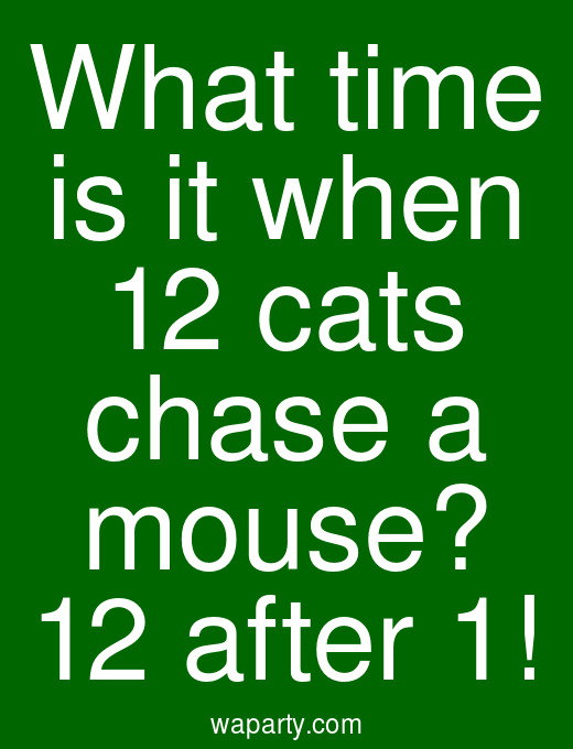 What time is it when 12 cats chase a mouse? 12 after 1!