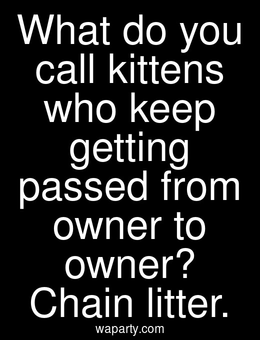What do you call kittens who keep getting passed from owner to owner? Chain litter.