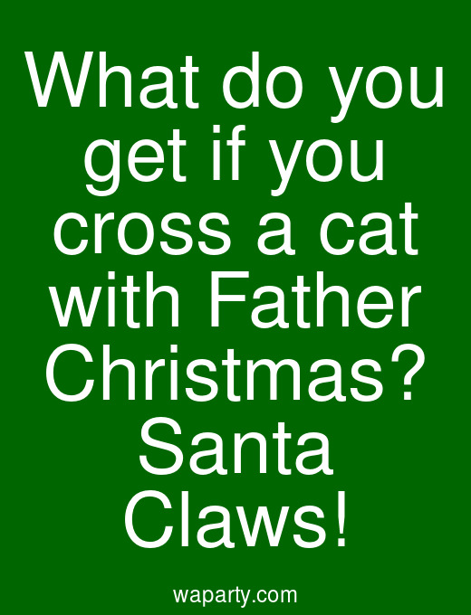 What do you get if you cross a cat with Father Christmas? Santa Claws!
