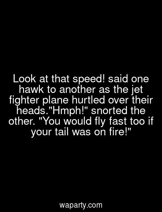 Look at that speed! said one hawk to another as the jet fighter plane hurtled over their heads.Hmph! snorted the other. You would fly fast too if your tail was on fire!