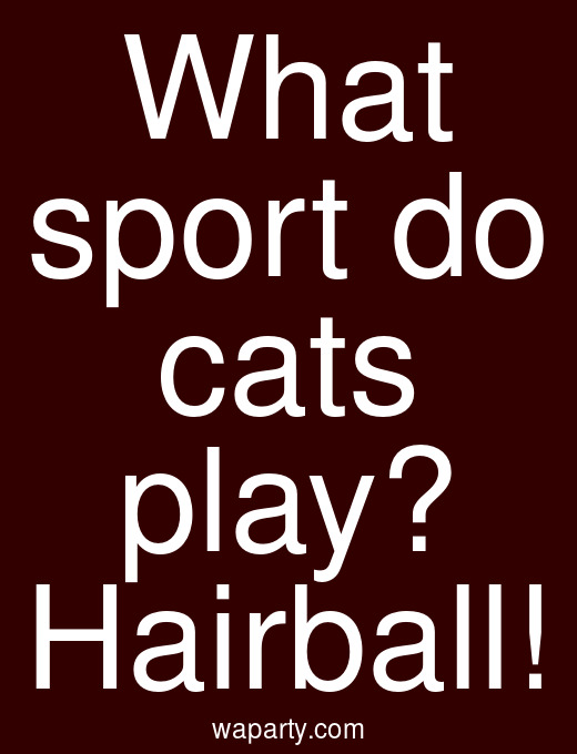 What sport do cats play? Hairball!