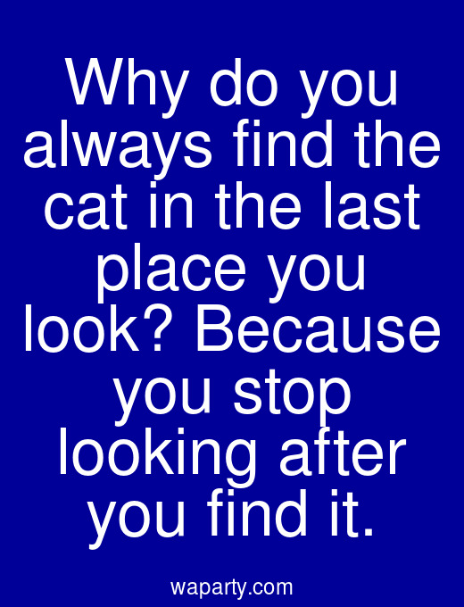 Why do you always find the cat in the last place you look? Because you stop looking after you find it.