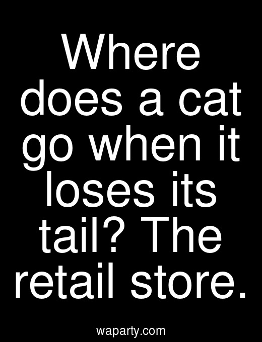 Where does a cat go when it loses its tail? The retail store.