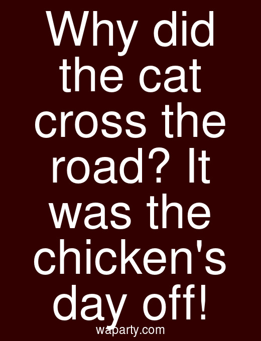 Why did the cat cross the road? It was the chickens day off!