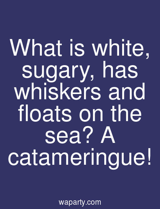 What is white, sugary, has whiskers and floats on the sea? A catameringue!