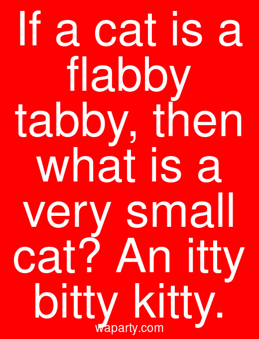 If a cat is a flabby tabby, then what is a very small cat? An itty bitty kitty.