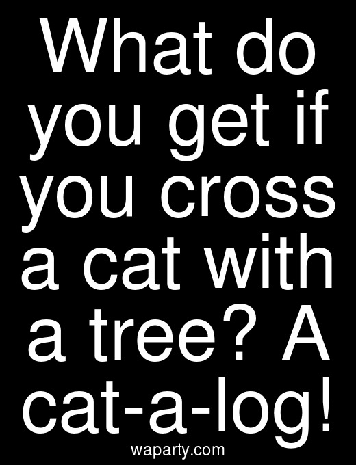 What do you get if you cross a cat with a tree? A cat-a-log!
