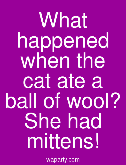 What happened when the cat ate a ball of wool? She had mittens!
