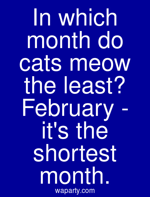 In which month do cats meow the least? February - its the shortest month.