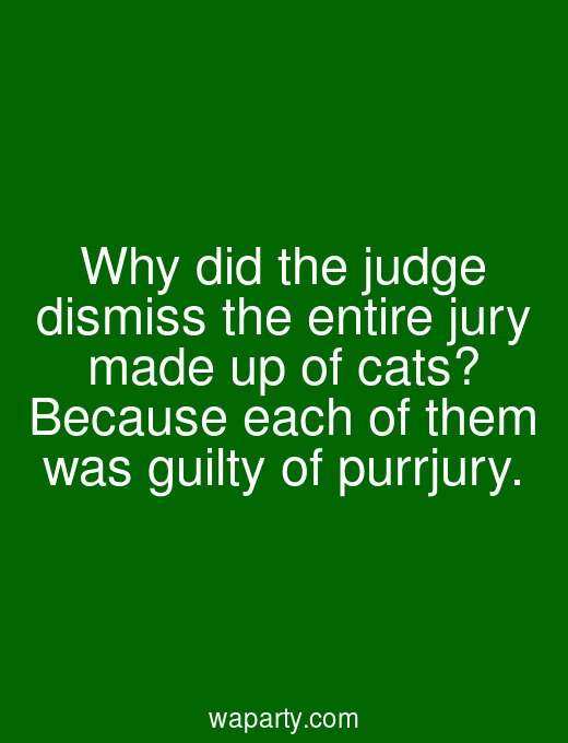 Why did the judge dismiss the entire jury made up of cats? Because each of them was guilty of purrjury.