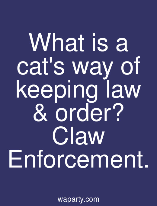What is a cats way of keeping law & order? Claw Enforcement.