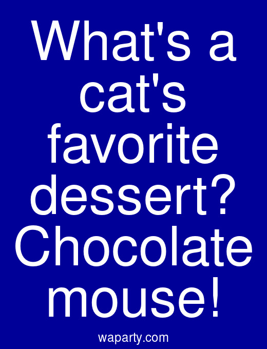 Whats a cats favorite dessert? Chocolate mouse!
