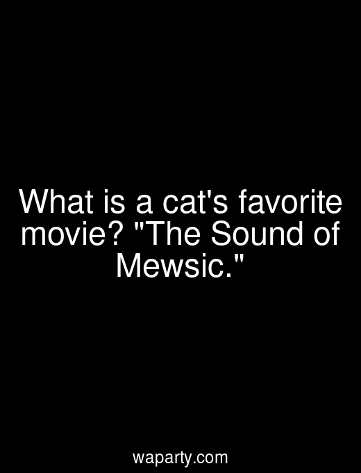 What is a cats favorite movie? The Sound of Mewsic.